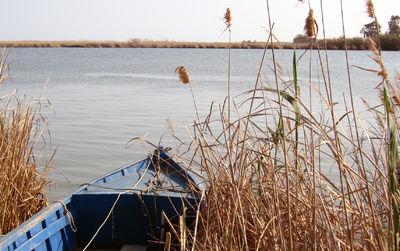 Delta de Ebro Costa Dorada Spain