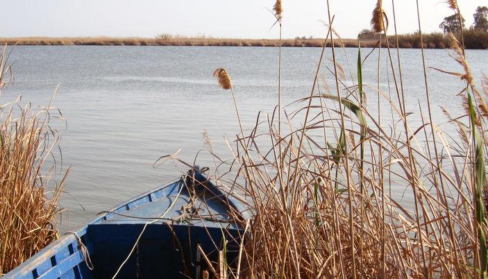 Visit the Delta del Ebro