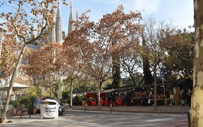 Fira de Nadal de la Sagrada Família - Barcelona