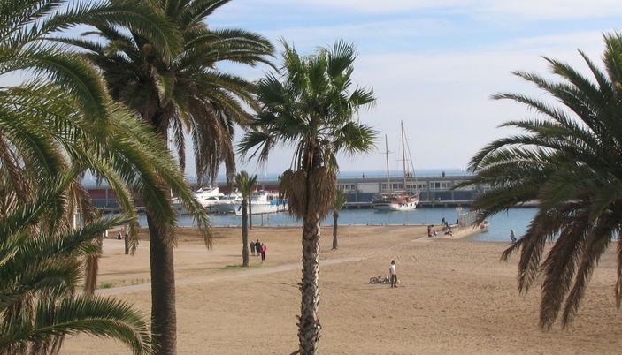 El Puerto Olímpico - Barcelona