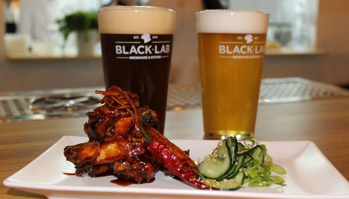 Blacklab - Barcelona