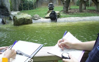 Zoo + Aquarium