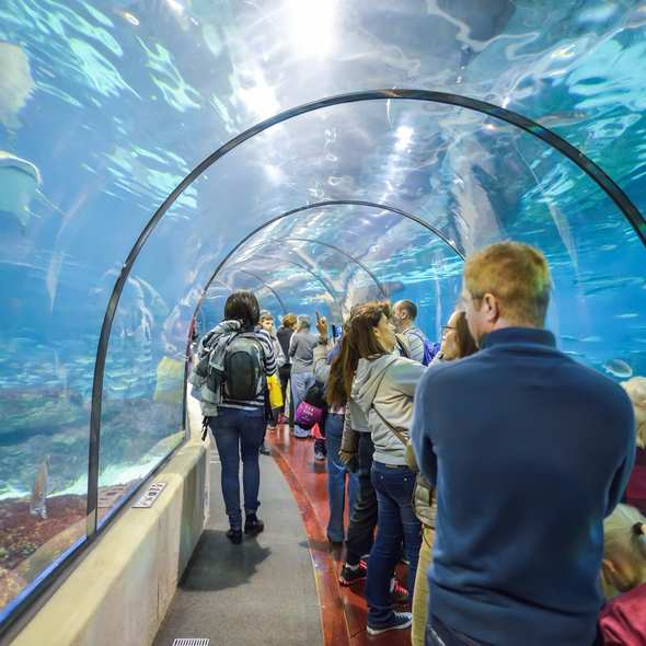 Tickets for Barcelona Aquarium