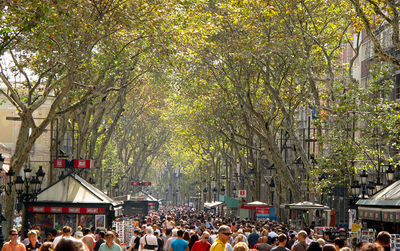 Apartments in Las Ramblas